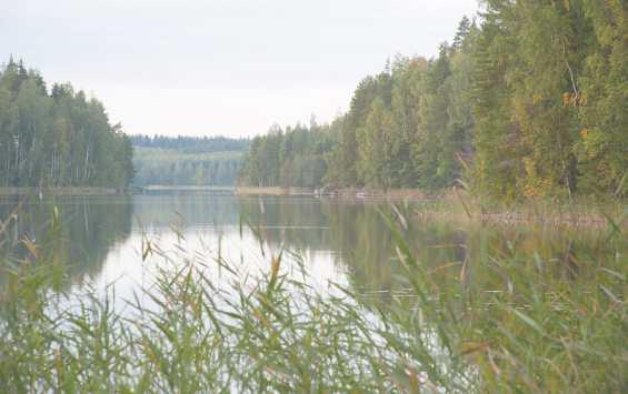 Финляндия. Озеро Пяйянне
