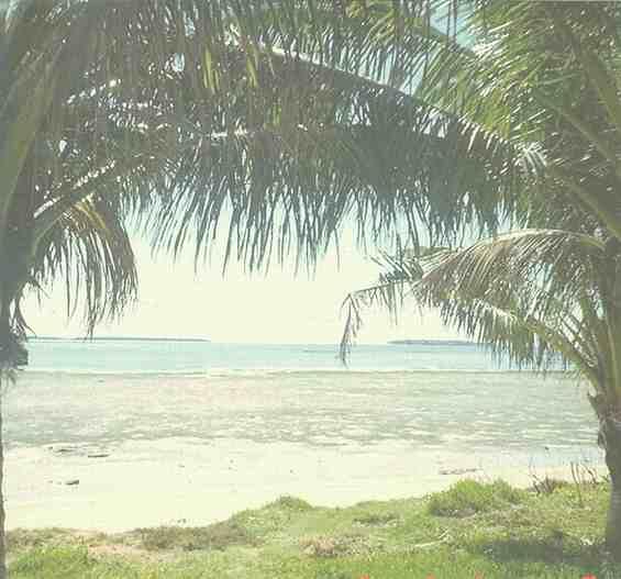 Тонга. Восхитительный пейзаж